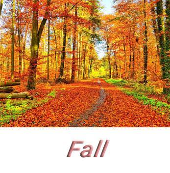 Herbstsartikel